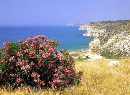 Last minute dovolená Kypr - fotografie