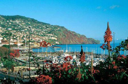 Last minute ostrov Madeira - fotografie