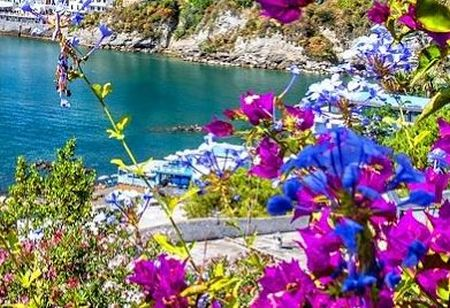 Dovolená ostrov Ischia - fotografie